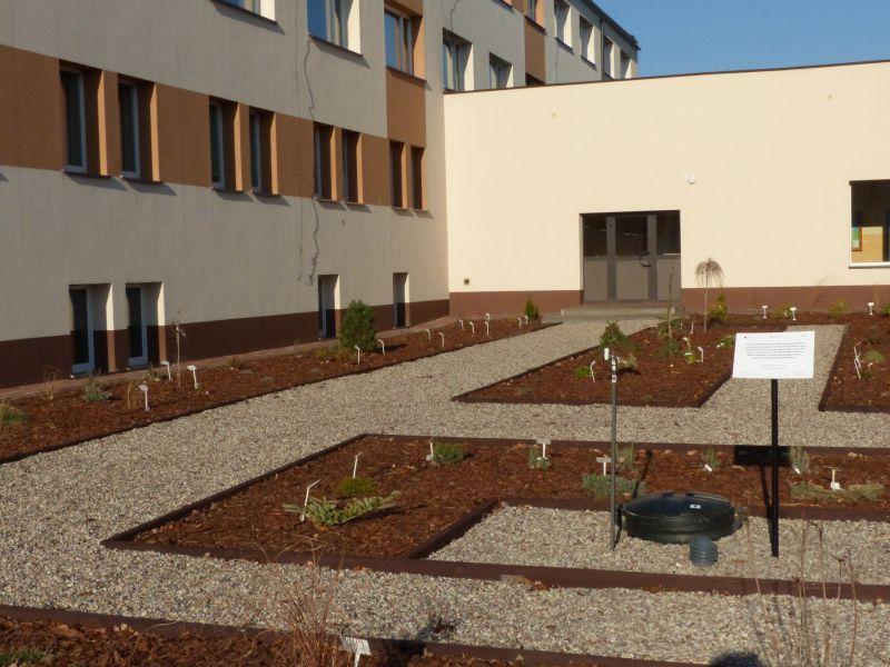 Edukacja, Ogródek dydaktyczny terenie otwarty - zdjęcie, fotografia
