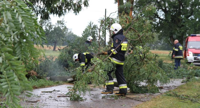 Interwencje straży pożarnej, Strażacy usuwają skutki porannej nawałnicy - zdjęcie, fotografia
