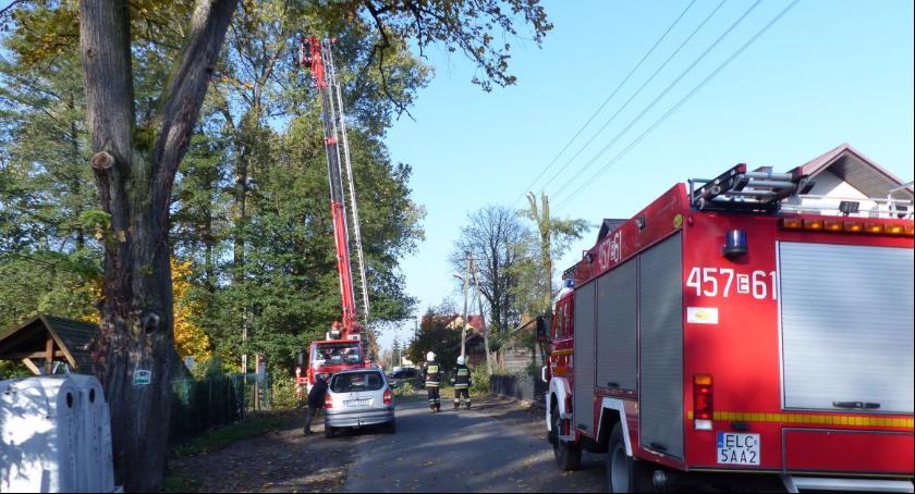 Edukacja, Straż własny koszt usuwa gałęzie topoli które zagrażały szkole Dąbkowicach - zdjęcie, fotografia