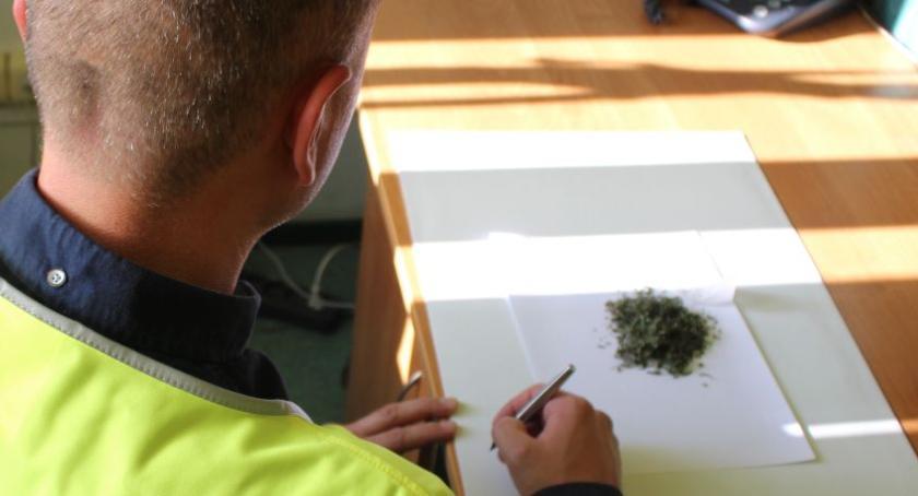Kronika policyjna, latek zatrzymany narkotykami centrum Łowicza - zdjęcie, fotografia