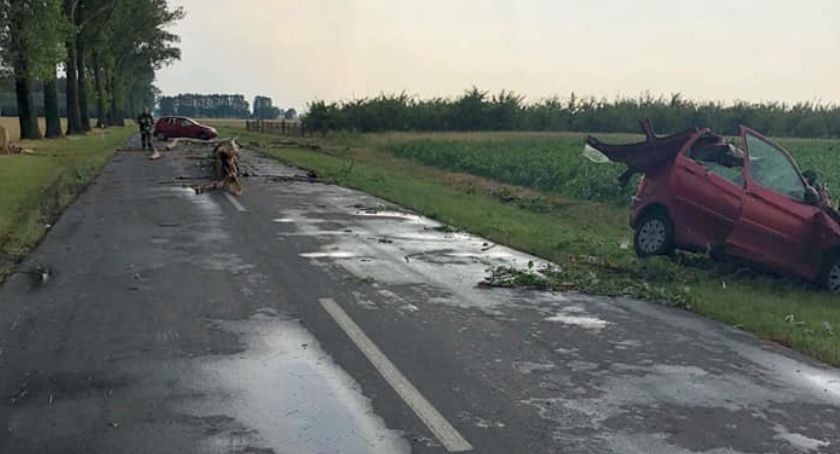 Interwencje straży pożarnej, Nawałnica Łowickiem Drzewo spadło jadące osoby zostały ranne - zdjęcie, fotografia