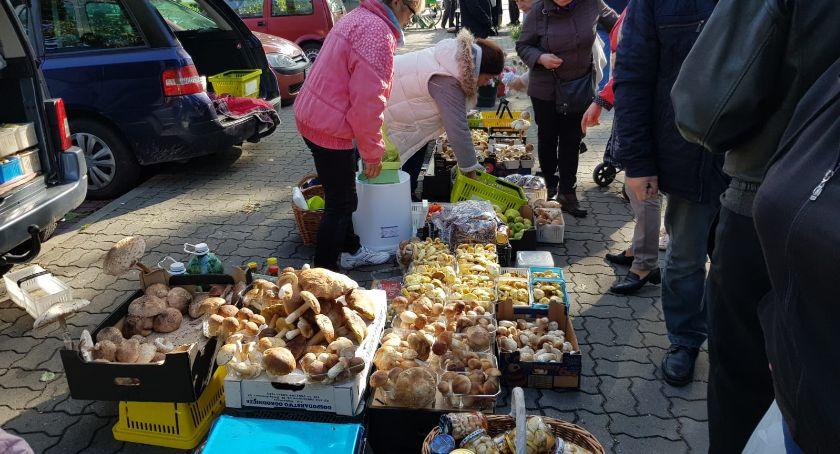 Wasze sprawy, Wysyp grzybów łowickim targowisku - zdjęcie, fotografia