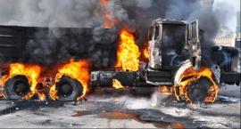 Wypadek ciężarówki Łowicz: 700 zwierząt spłonęło żywcem