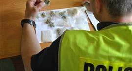 Kryminalni ustalają źródło pochodzenia amfetaminy i marihuany