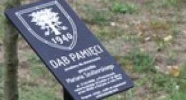 Dąb Pamięci w Bobrownikach