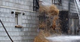 Strażacy walczyli z pożarem chlewni w Lenartowie - Aktualizacja