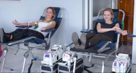 Wakacyjna zbiórka krwi przy Intermarche