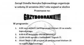Zarząd osiedla Dąbrowskiego zaprasza na... grzybobranie