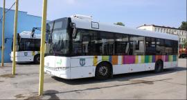 Rusza budowa pętli autobusowej na Bratkowicach. Zmiany w kursowaniu autobusu MZK