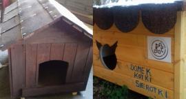 """Akcja """"Domek dla kotki sierotki"""" w Łowiczu"""