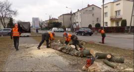 Miasto przygotowuje teren pod inwestycje na Topolowej i Kopernika