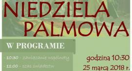 Niedziela palmowa w Łowiczu (program)