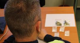 Narkotyki w Łowiczu i Zdunach. Młodzi mężczyźni z zarzutami