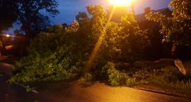 Piątkowa burza nie wyrządziła większych szkód w Łowickiem