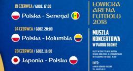 Rusza sprzedaż biletów na oglądanie mundialu w łowickiej strefie kibica