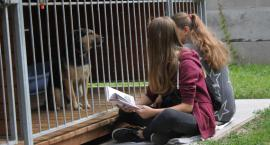 """Akcja """"Dzieci czytają bezdomniakom"""" w Łowiczu"""