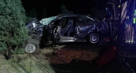 Wypadek pod Łowiczem. Kierowca BMW uderzył w drzewo
