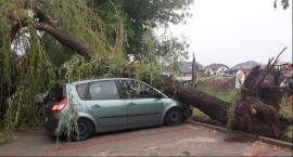 Popołudniowa burza wyrządziła wiele szkód [ZDJĘCIA, VIDEO]