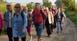 Pątnicy w drodze do domaniewickiego sanktuarium [VIDEO, FOTO]