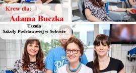 Potrzebna krew dla ucznia SP w Sobocie