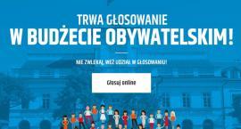 Łowicz: ruszyło głosowanie do budżetu obywatelskiego (LISTA PROJEKTÓW)