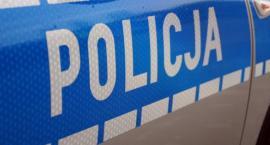 Łowicz: pijany 42-latek wjechał w autem w ogrodzenie. Schował się w zaroślach