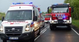 Śmiertelny wypadek pod Łowiczem. Kierowca zginął po zderzeniu z łosiem