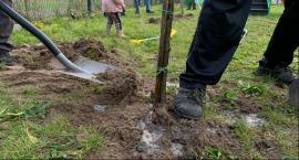 Sadzenie drzew na łowickich Górkach oraz w Rogóźnie