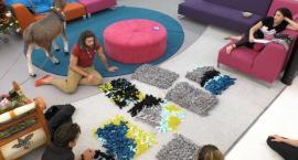 """Uczestnicy """"Big Brothera"""" wykonali maty dla psów z łowickiego schroniska. Trwa zbiórka dla czworonogów"""