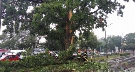 Groźna burza nad Łowiczem