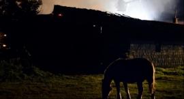 Zwierzęta płonęły żywcem w gospodarstwie w Zielkowicach!