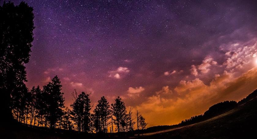 Ciekawostki, Deszcz gwiazd spada puszczę - zdjęcie, fotografia