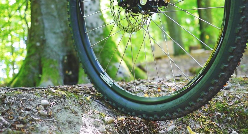 Trasy rowerowe, Kampinoski szlak rowerowy zamknięty - zdjęcie, fotografia