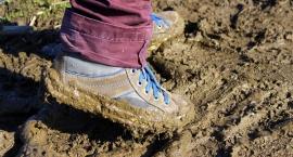 Szlaki piesze Kampinos: utrudnienia z powodu podtopień