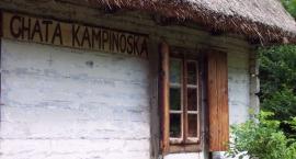 Wpadnij na Dzień Pszczelarza do Chaty Kampinoskiej