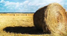 Mieszkańcy Gminy Kampinos nominowani do Plebiscytu MISTRZOWIE AGRO