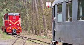 Odkryć bogactwo puszczy pociągiem retro – zapraszamy na konferencję