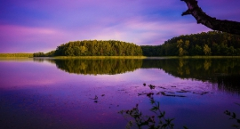 Zalew na Utracie Kampinos - nie tylko las: wielkie plany budowy jeziora