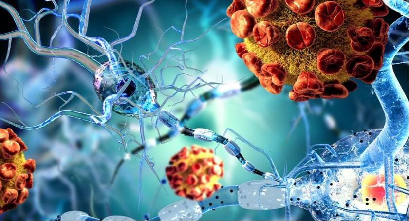 Informacje, Przeciwko wirusowi brodawczaka ludzkiego (HPV) - zdjęcie, fotografia