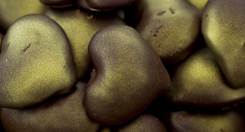 Kulinaria, Pierniczki nadziewane polewie czekoladowej - zdjęcie, fotografia