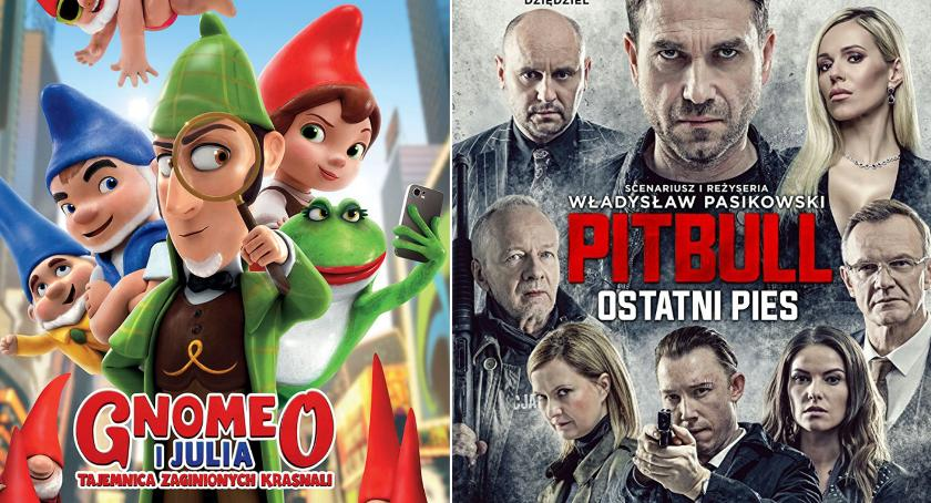 Kino, Gnomeo Julia Pitbull Ostatni kwietniu kinie - zdjęcie, fotografia
