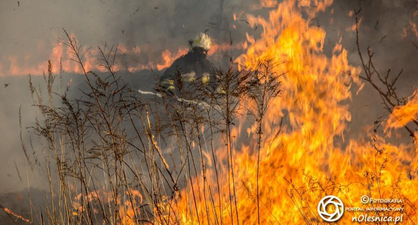 Wydarzenia, Wypalanie grozi surowa - zdjęcie, fotografia