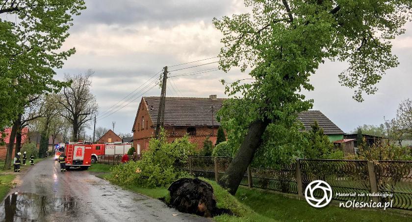 Na sygnale, Wczorajsza burza powiatem oleśnickim - zdjęcie, fotografia