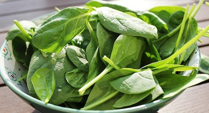 Zdrowie, Dieta wegetariańska dzieci zdrowa - zdjęcie, fotografia