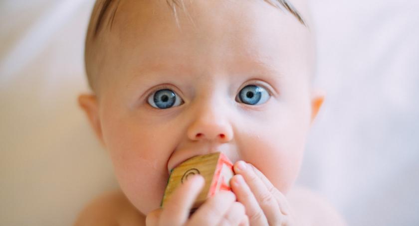 Zdrowie, Dowiedz ważną pełnią tłuszcze diecie dzieci które tłuszczy dają najwięcej korzyść - zdjęcie, fotografia