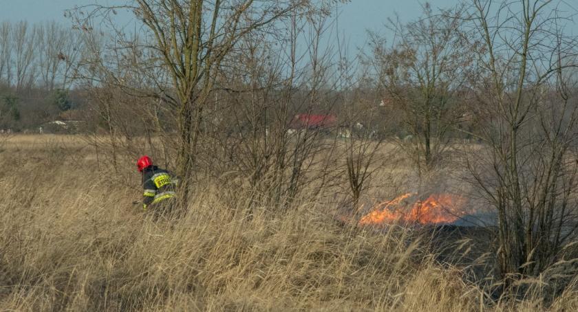Na sygnale, Kolejny pożar tradycyjnie kwadratach - zdjęcie, fotografia