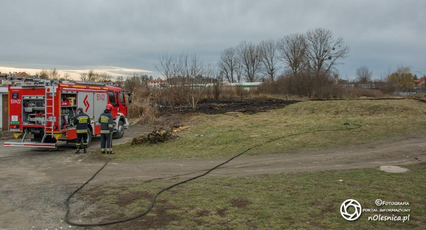 Na sygnale, Pożar trawy koło LIDLa - zdjęcie, fotografia