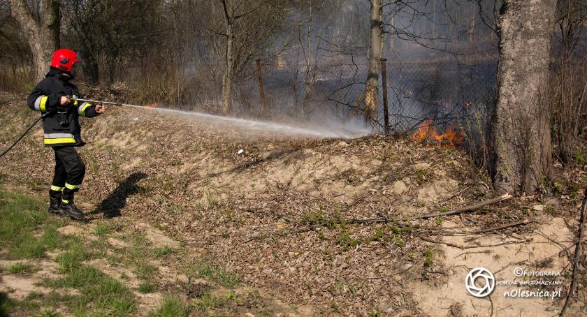 Na sygnale, Pożar ogródkach działkowych - zdjęcie, fotografia