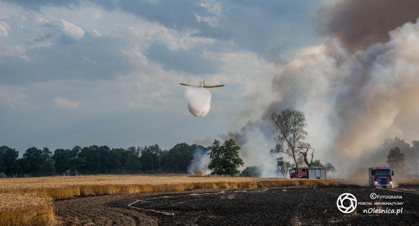 Na sygnale, Duży pożar zboża Brzezince spłonęło ponad interweniowały pożarnicze Dromadery - zdjęcie, fotografia