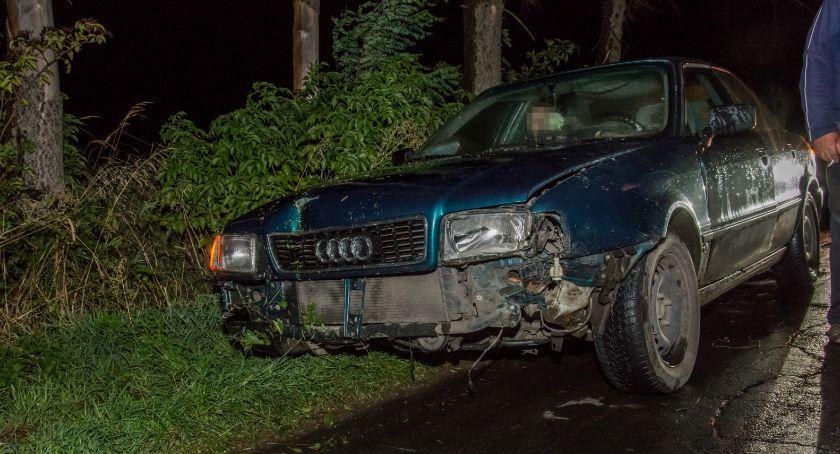 Na sygnale, Stronia drzewo spadło nadjeżdżające pojazdy - zdjęcie, fotografia